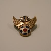 Air Force Association pin