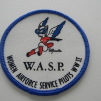 16387586-WASPFifinellaPatch.JPG