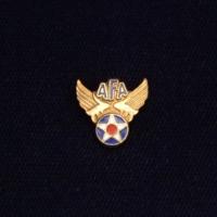 Air Force Association Logo Gold Pin