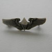 16387596-SilverWASPWings.JPG