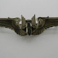 16387588-USAAFAerialGunnerBadge.JPG
