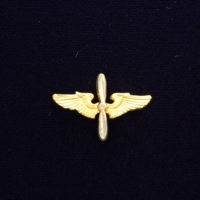 United States Army Airforce wings lapel pin
